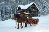 Horse drawn sleigh rides in Bad Gastein